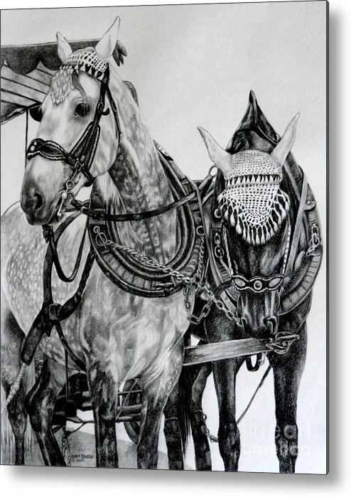 Horse Pencil Black White Germany Rothenburg Metal Print featuring the drawing 2 Horses Of Rothenburg 2000usd by Karen Bowden