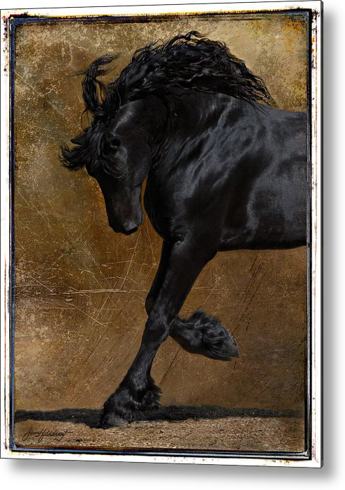 Horse Metal Print featuring the photograph A Regal Bow by Jean Hildebrant