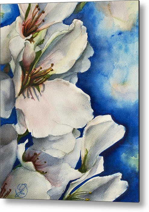 Cherry Metal Print featuring the painting Cherry Blossoms by Gae Helton