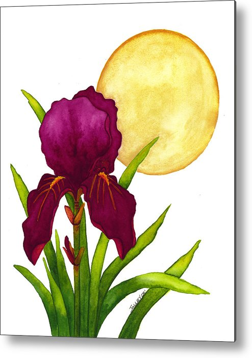 Iris Metal Print featuring the painting Purple Iris by Stephanie Jolley