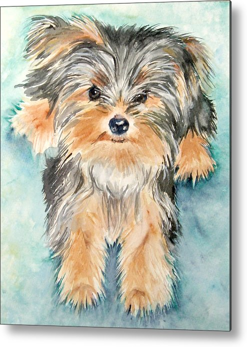 Canine Metal Print featuring the painting Rascall by Gina Hall