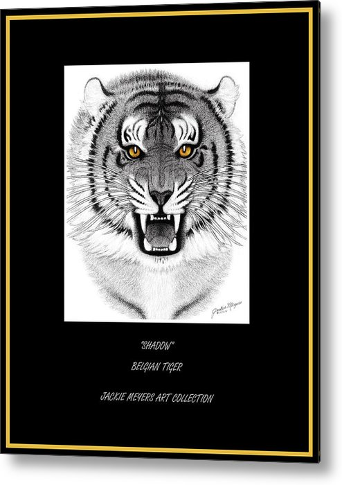 Siberian Metal Print featuring the drawing Shadow by Jackie Meyers
