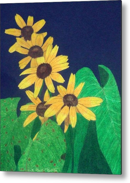 Black-eyed Susan Metal Print featuring the drawing Summers End by Anita Putman