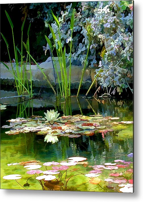 Lily Pond Metal Print featuring the photograph The Lily Pond II by Lynn Andrews