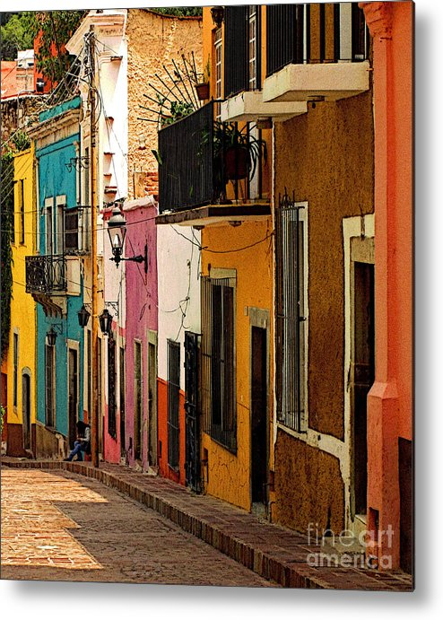 Darian Day Metal Print featuring the photograph Waiting For Friends by Mexicolors Art Photography