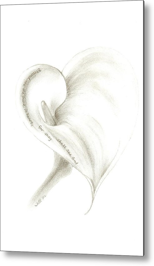 Flower Metal Print featuring the drawing Calla Lily by Jennie Richards