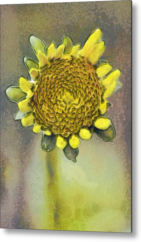 Spring Metal Print featuring the painting The Sunflower by Odon Czintos
