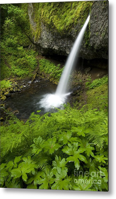 Landscape Metal Print featuring the photograph Waterfall by John Shaw