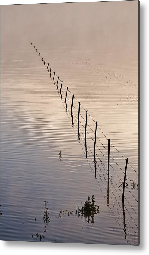 Pond; Morning Light; Early; Fog; Background; Fence; Swartland; South Africa; Landscape; Decorative; Peaceful; Metal Print featuring the photograph Morning Light.. by Werner Lehmann
