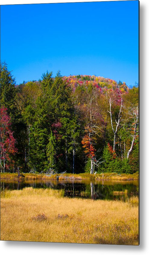 Adirondack's Metal Print featuring the photograph Adirondack Color IIi by David Patterson