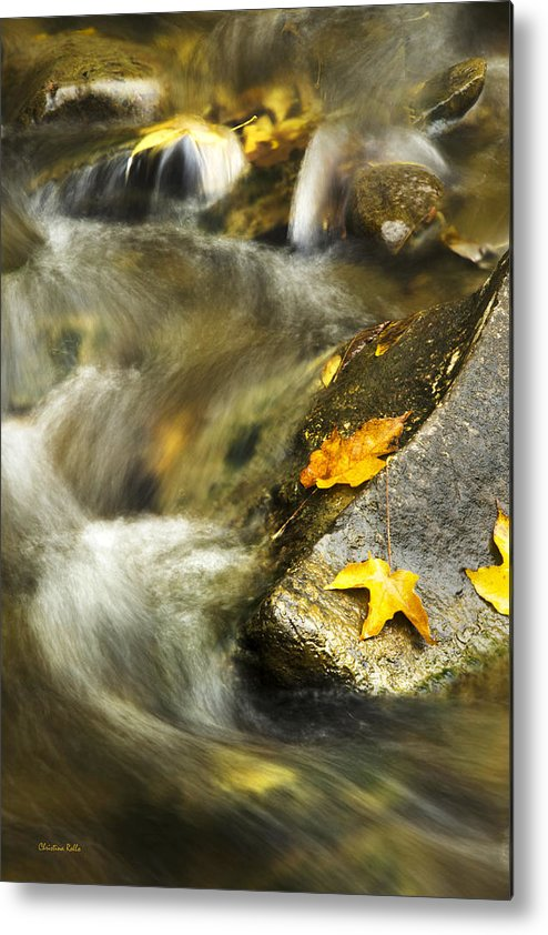 Autumn Creek Metal Print by Christina Rollo