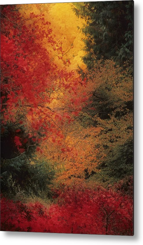 Washington State Metal Print featuring the photograph Autumn Impression by Bobbie Climer