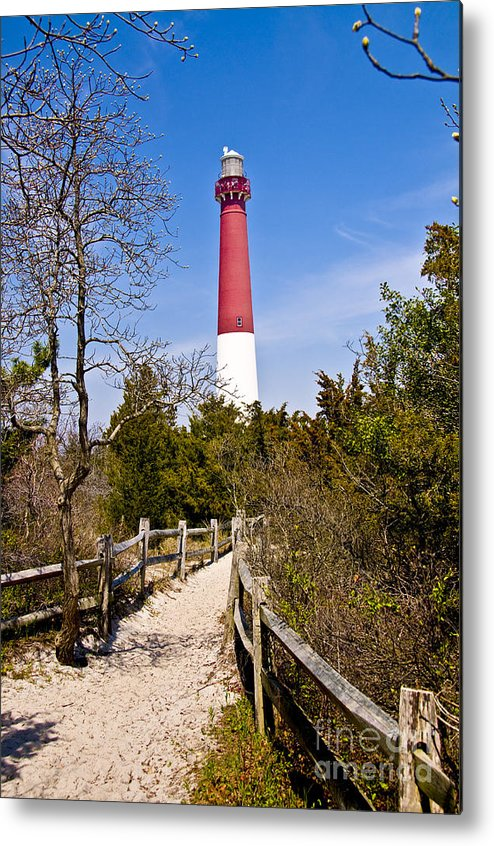 Lighthouses Metal Print featuring the photograph Barnegat Lighthouse II by Anthony Sacco