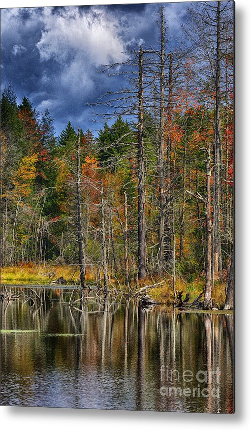 Fall Metal Print featuring the photograph Beaver Pond Reflections Along The Highland Scenic Highway by Thomas R Fletcher