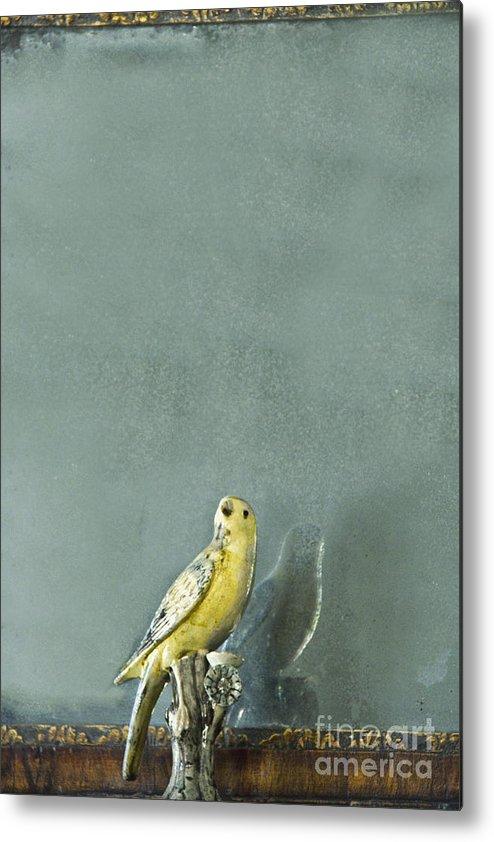 Bird Metal Print featuring the photograph Bird by Margie Hurwich