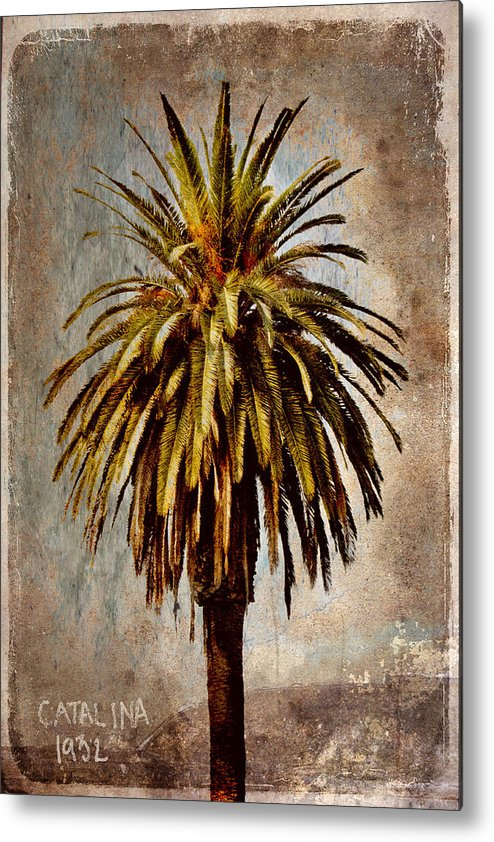 Palm Metal Print featuring the mixed media Catalina 1932 Postcard by Carol Leigh
