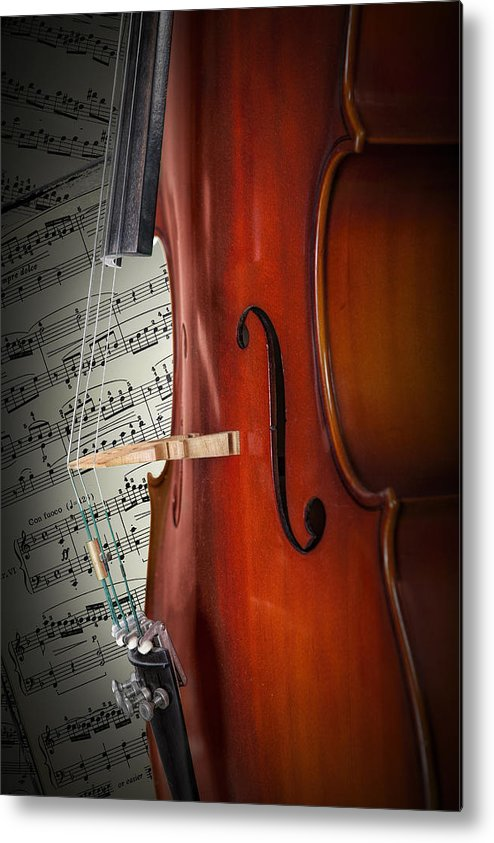 Cello Metal Print featuring the photograph Cello Bridge And Beethoven by Randall Nyhof