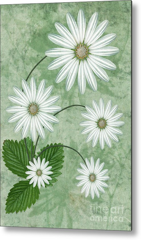 Abstract Flowers Metal Print featuring the digital art Cinco by John Edwards