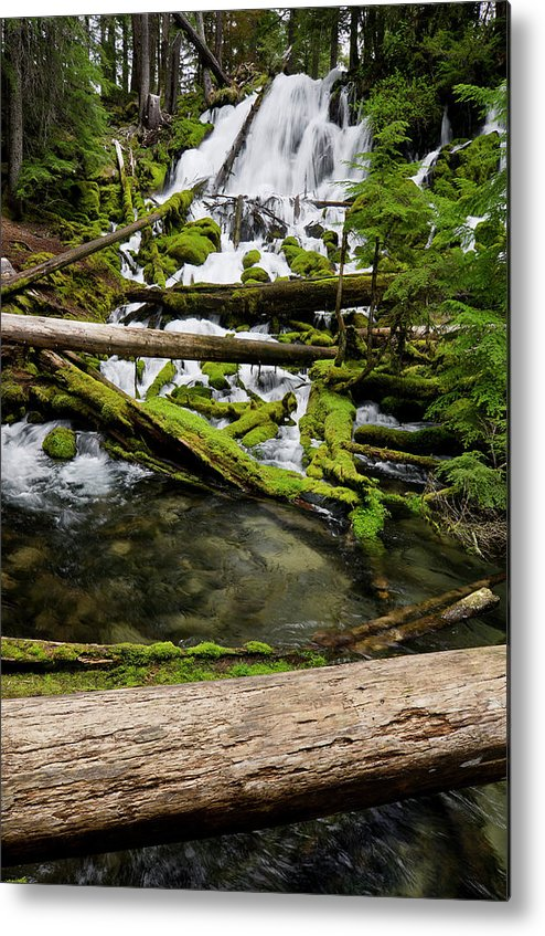 Cascades Metal Print featuring the photograph Clearwater Falls by Greg Nyquist