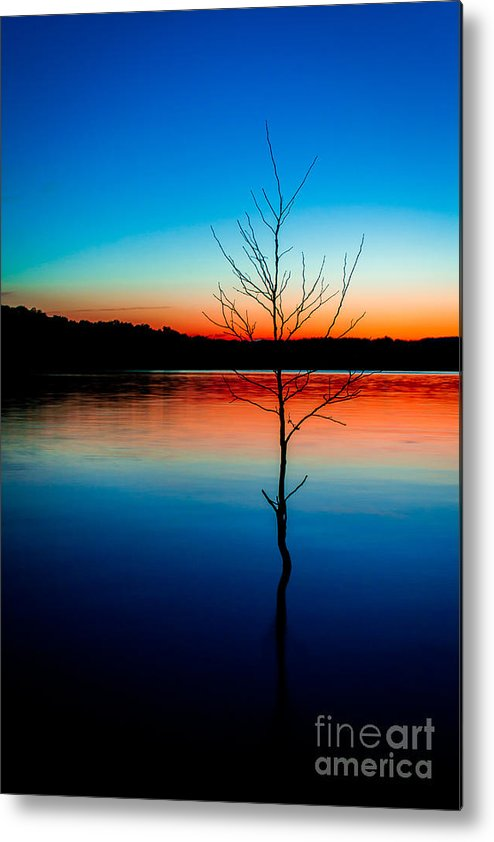 Sunset Metal Print featuring the photograph Dead Tree Beauty At Sunset Over Table Rock Lake by JC Kirk