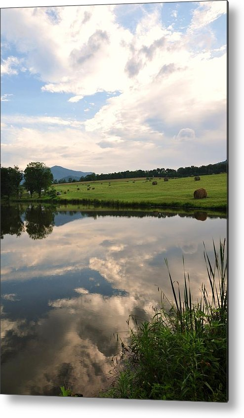 Pond Metal Print featuring the photograph Early Morning On The Pond 2 by Sherri Quick