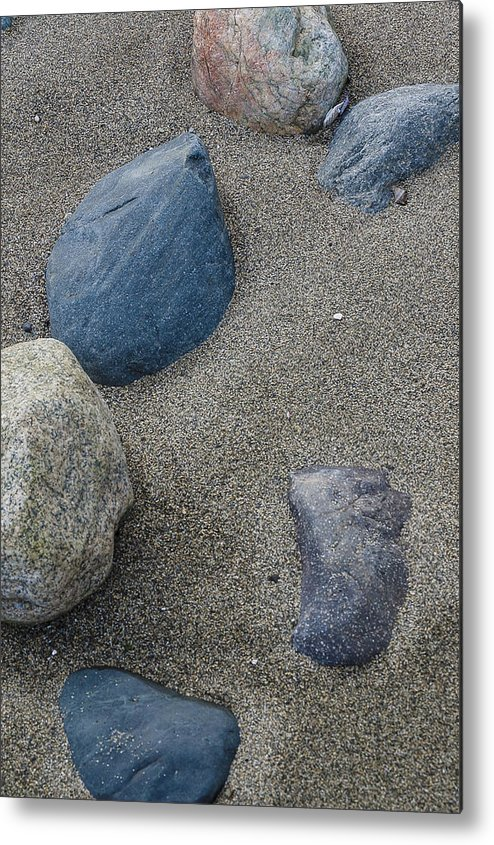 Double Bluff Metal Print featuring the photograph February Rock Garden by Tom Trimbath