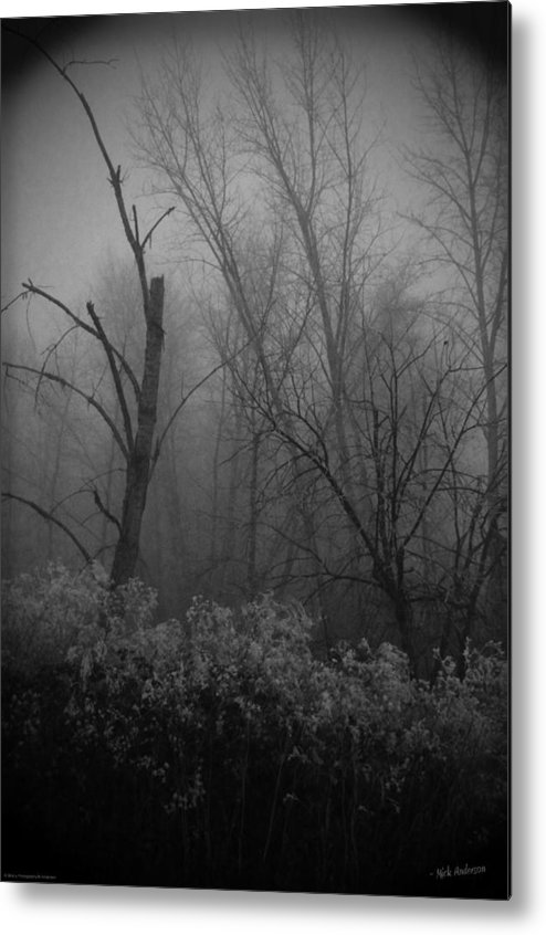 Frozen Metal Print featuring the photograph Freezing Rogue Valley Fog At Night by Mick Anderson