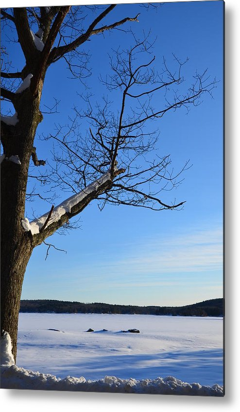 Winter Landscape Metal Print featuring the photograph Frozen by Charlene Goodrow