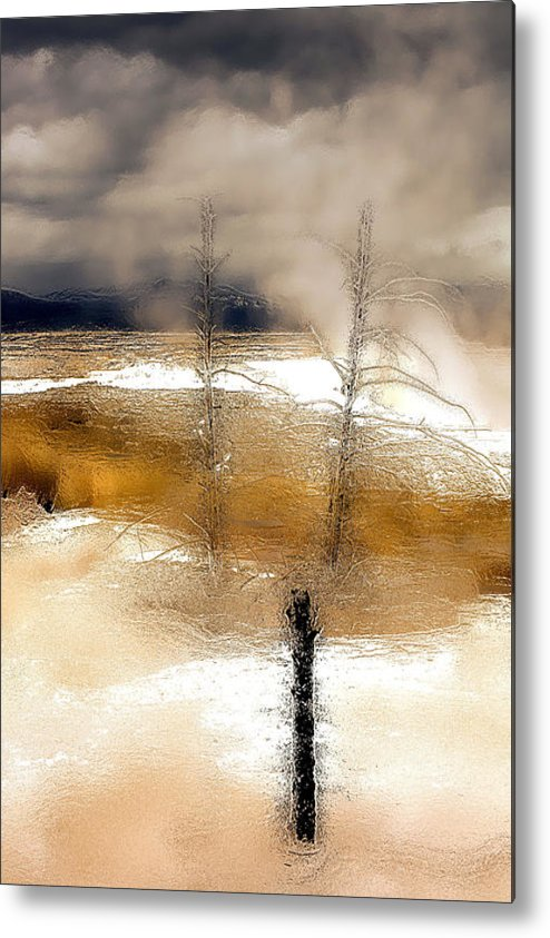 Forest Metal Print featuring the photograph Frozen Time I by Isartdesign By Isabella Schnittger
