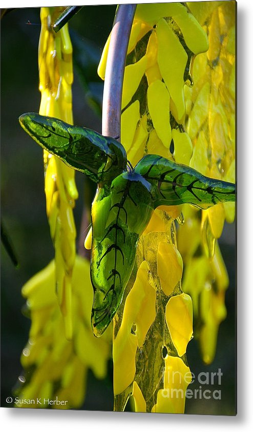 Glass Metal Print featuring the photograph Green Glass Leaves by Susan Herber