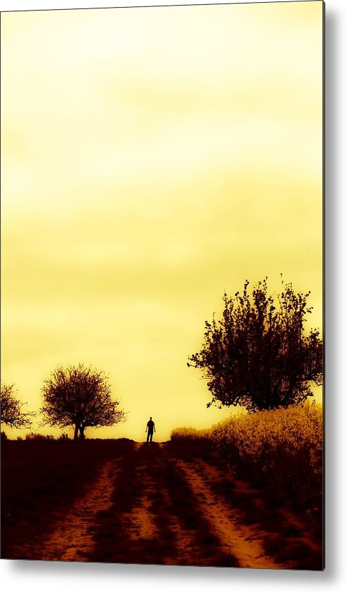 Landscape Metal Print featuring the photograph Leaving by Guido Schaefer