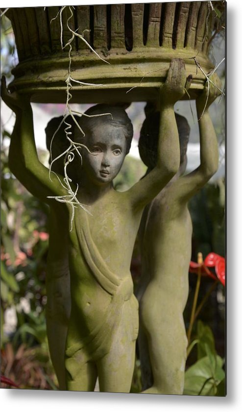 Garden Metal Print featuring the photograph Lifting Up by William Hallett