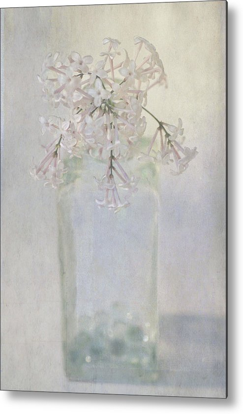 Lilac Metal Print featuring the photograph Lilac Flower by Annie Snel