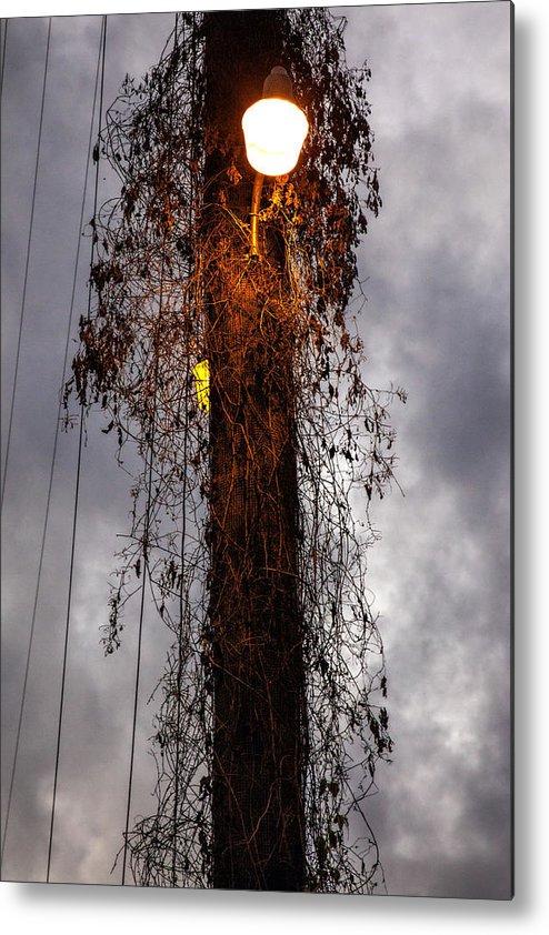 Louisiana Metal Print featuring the photograph Louisiana Light Post by Diana Powell