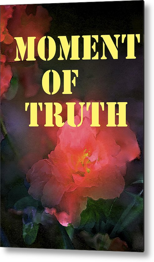 Moment Of Truth Metal Print featuring the photograph Moment Of Truth by Pamela Cooper