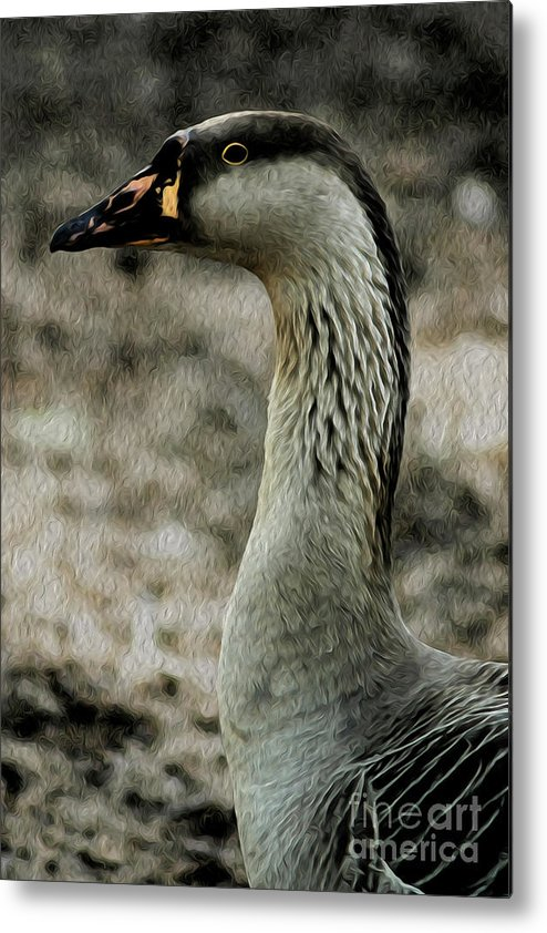 Duck Metal Print featuring the digital art My Good Side by Kenneth Montgomery