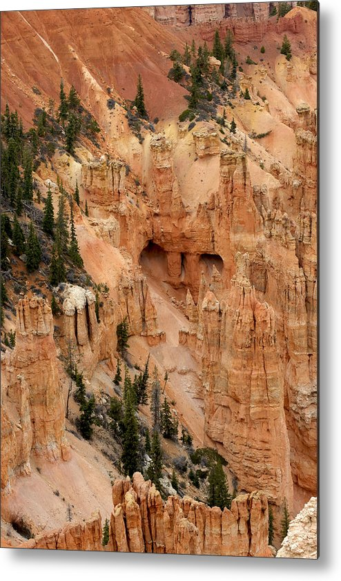 Mountains Metal Print featuring the photograph Nested Pines by Bryan Shane