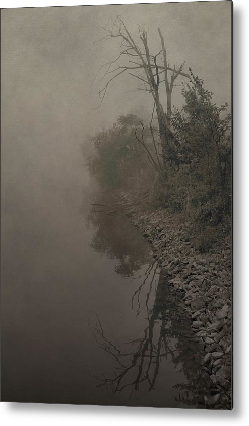 Fog Metal Print featuring the photograph Old Soul by Dan Sproul