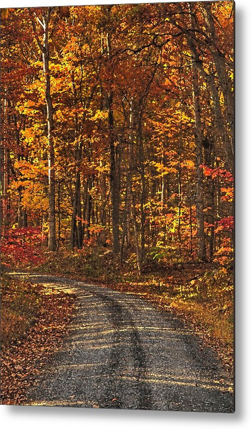 Autumn Metal Print featuring the photograph Painted Autumn Country Roads by Lara Ellis