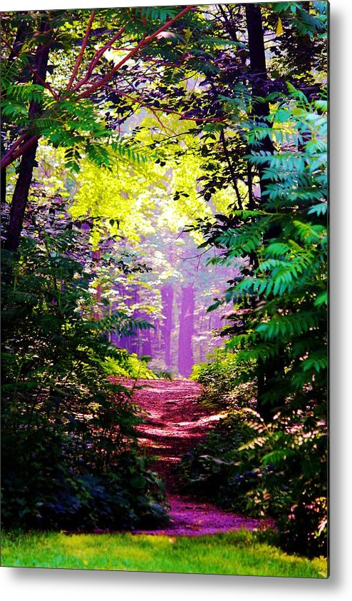 Green Metal Print featuring the photograph Path In The Woods by Evelina Charpentier