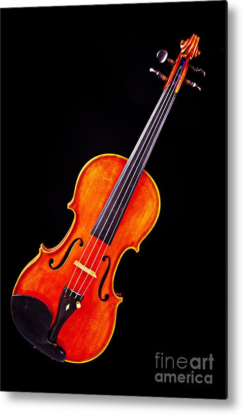 Violin Metal Print featuring the photograph Photograph Of A Complete Viola Violin In Color 3368.02 by M K Miller