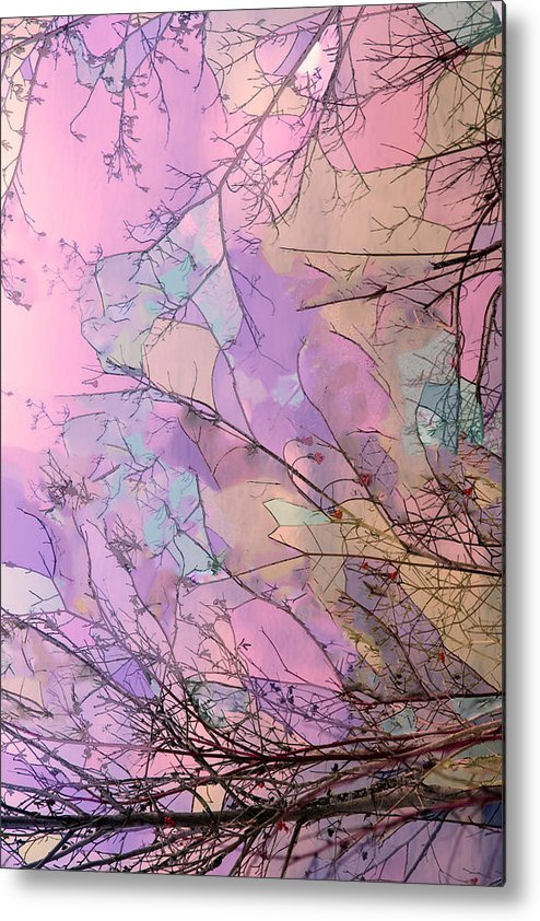 Water Metal Print featuring the photograph Rapture by Kathy Bassett