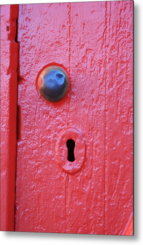 Red Metal Print featuring the photograph Red by Danielle Gareau