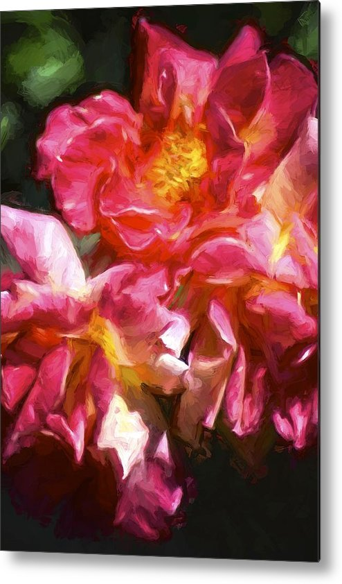 Floral Metal Print featuring the photograph Rose 115 by Pamela Cooper