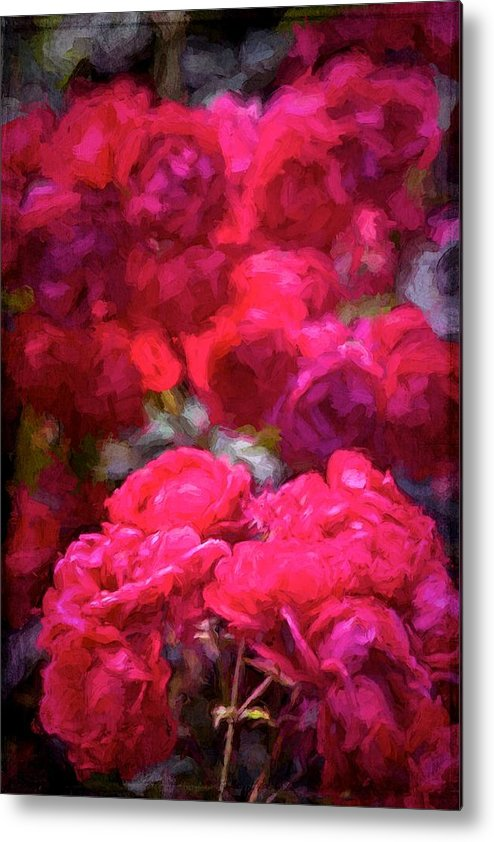 Floral Metal Print featuring the photograph Rose 134 by Pamela Cooper