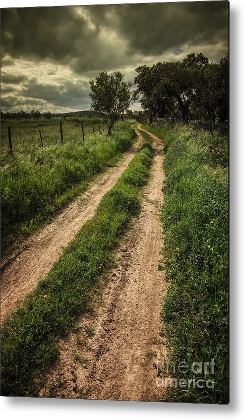 Hike Metal Print featuring the photograph Rural Trail by Carlos Caetano