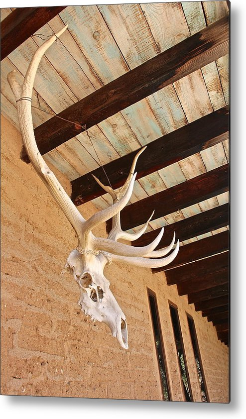 Metal Print featuring the digital art Side Skull by Jen Brooks Art
