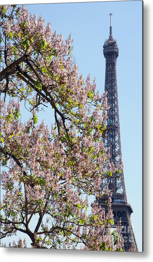 Paris Metal Print featuring the photograph Spring In Paris by Colin Woods