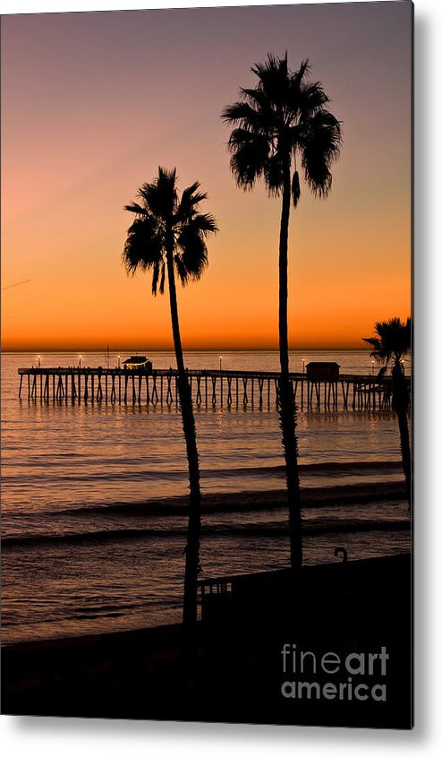 Seaweed Metal Print featuring the photograph T Street Pier San Clemente California From The Book My Ocean by Artist and Photographer Laura Wrede