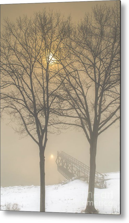 Embrace Metal Print featuring the photograph The Embrace by Scott Thorp
